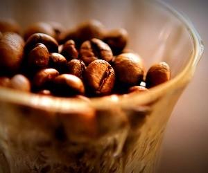 coffeecase-3